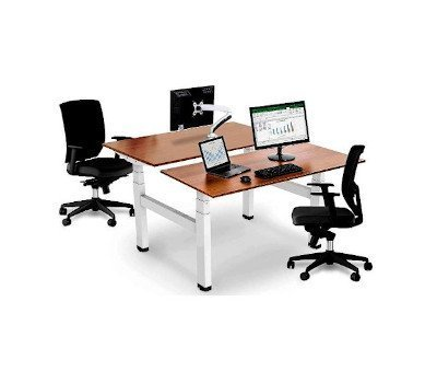 Electric Twin Standing Desks Back-To-Back